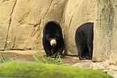 2010-10-24 台北市立動物園:IMG_1361.jpg