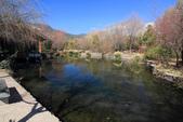 2013-01-20 雲南麗江-束河古鎮、大研古鎮夜景:IMG_0061.jpg