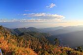 2010-12-05 太平山-望洋山:IMG_4416.jpg