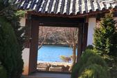 2013-01-20 雲南麗江-玉龍書院、東巴院落、千年古樹群、納西族神泉:IMG_9929.jpg