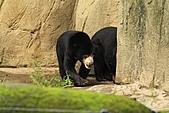2010-10-24 台北市立動物園:IMG_1362.jpg