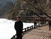 2008-03-04 九寨溝-熊貓海:IMG_6409.JPG