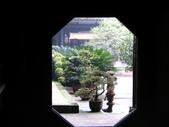 2008-03-07 報國寺、伏虎寺:IMG_7133.JPG