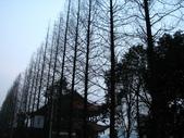 2008-03-06 茂縣->樂山大佛:IMG_7055.JPG