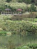 2010-10-23 大屯自然公園:IMG_1116.jpg