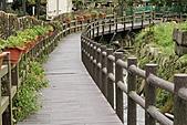 2010-10-23 台北-竹子湖:IMG_1059.jpg