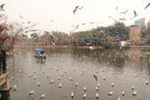 2013-01-17 雲南昆明-翠湖、陸軍講武堂:IMG_9069.jpg
