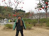 2009-01-25 象鼻山:IMG_0148.JPG
