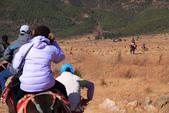 2013-01-20 雲南麗江-玉柱擎天景區-->玉湖村納西古村落(騎馬):IMG_9838.jpg