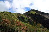 2011-10-08 合歡山主峰:IMG_3355.jpg
