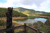 2010-12-05 太平山-翠峰湖:IMG_4519.jpg