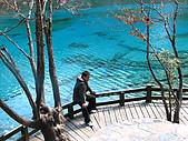 2008-03-04 九寨溝-五花海:IMG_6461.JPG
