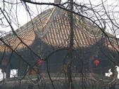 2008-03-08 成都青羊宮:IMG_7327.JPG