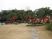 2009-01-25 象鼻山:IMG_0150.JPG