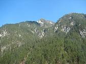 2008-03-04 九寨溝-盆景灘:IMG_6726.JPG