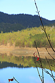 2010-12-05 太平山-翠峰湖:IMG_4526.jpg