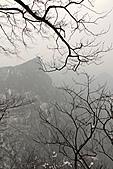 2011-01-24 湖南-天門山鬼谷棧道:IMG_7616.jpg