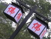 2008-03-07 報國寺、伏虎寺:IMG_7141.JPG