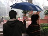 2008-03-08 成都青羊宮:IMG_7328.JPG