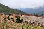 2010-12-05 太平山-翠峰湖-->太平山莊:IMG_4735.jpg