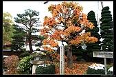 971120日本北陸-黑部立山之旅:IMG_4712.jpg