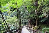 北橫_西湖度假村之旅:NorthRoad_008.JPG