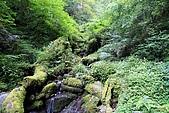 北橫_西湖度假村之旅:NorthRoad_011.JPG
