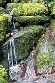 北橫_西湖度假村之旅:NorthRoad_012.JPG