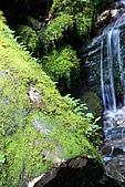 北橫_西湖度假村之旅:NorthRoad_013.JPG