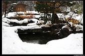 971120日本北陸-黑部立山之旅:IMG_4794.jpg
