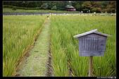 20130904日本四國之旅:P1080263.jpg