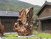 花蓮~林田山 單車:IMGA0296.JPG