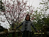 玉里農地:IMG_0505.JPG