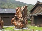 花蓮~玉里單車之旅:IMGA0296.JPG