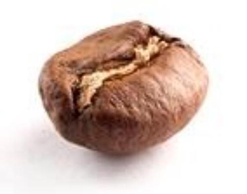 11535661_881985455201626_933946820441311961_n[1].jpg - 單品咖啡豆專賣