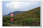 台北市士林區風景點:擎天崗1