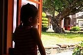 屏東縣萬巒鄉風景點:萬金聖母聖殿 4