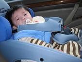 仕頎の成長記錄:賽車級三點式兒童安全座椅