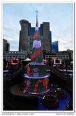 20131206 新北市 市民廣場 聖誕樹 隨拍:DSC_1882.JPG