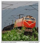 20140501 宜蘭 田野火車與吉米車站 隨拍:DSC_5577.JPG