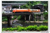 20140620 新北市 三貂嶺車站 火車拍拍:DSC_7440.JPG