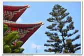 20160730 北市 圓山大飯店 飛機隨拍:DSC_7527.JPG