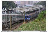 20190205 新北市 汐科站 台鐵 南海電鐵彩繪列車-藍武士 補考:DSC_9177.JPG