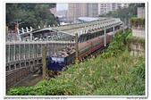 20190205 新北市 汐科站 台鐵 南海電鐵彩繪列車-藍武士 補考:DSC_9201.JPG