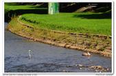 20131013 北市 芝山岩河濱公園 隨拍:DSC_8028.JPG