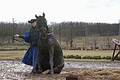 20090128-0206 匈牙利奧地利德:馬兒坐著...說實在話看馬坐著就覺得看起來很蠢