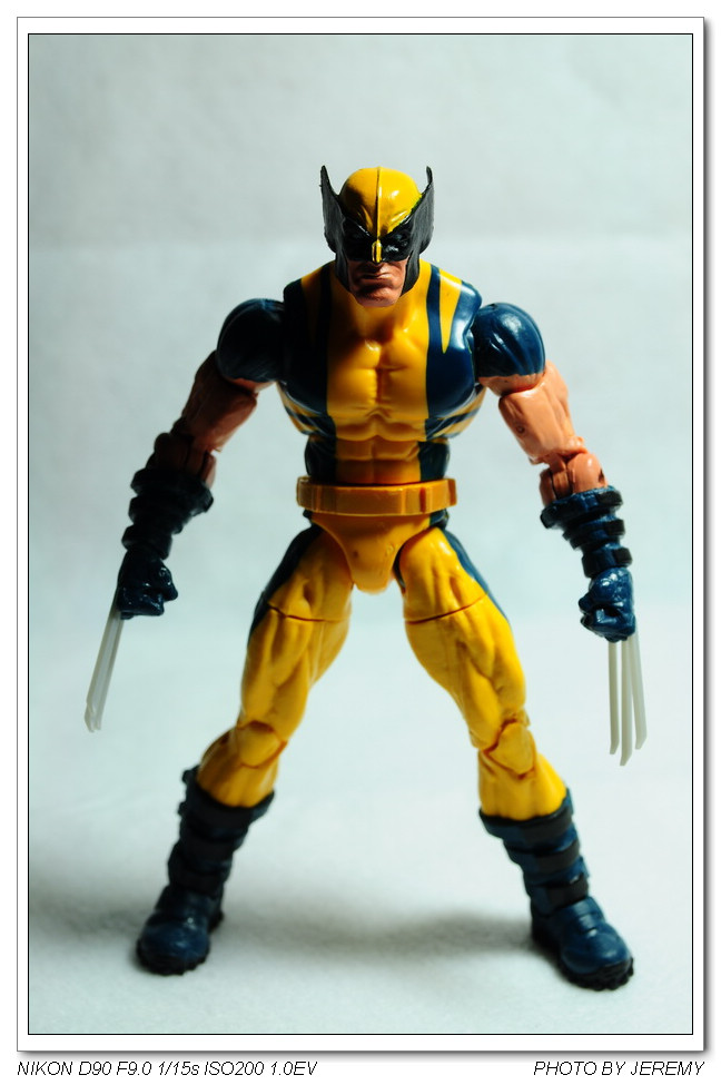Marvel Legends 6吋 Wolverine 黃衣漫畫版 金剛狼 :DSC_8573.JPG