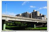 20131013 北市 芝山岩河濱公園 隨拍:DSC_8045.JPG
