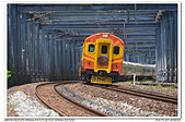 20180728 宜蘭 英國阿婆自強號 追火車 隨拍:DSC_7073.JPG