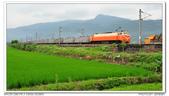 20140501 宜蘭 田野火車與吉米車站 隨拍:DSC_5560.JPG